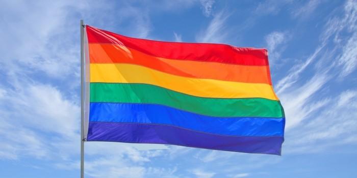 ЛГБТ флаг