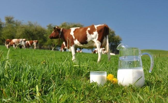 Молоко украина