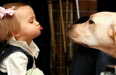 Gambar-anjing-dan-bayi-lucu