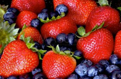 content_fruit1